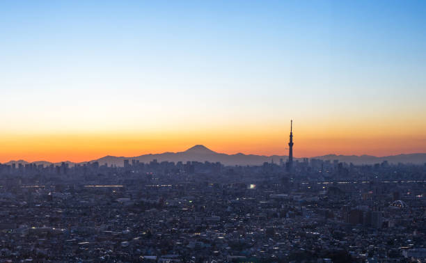 View of Tokyo skyline and the view of Tokyo skytree / Tokyo, Japan:スマホ壁紙(壁紙.com)