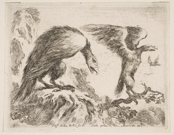 Beak「Plate 2: Eagle And Eaglet」:写真・画像(9)[壁紙.com]