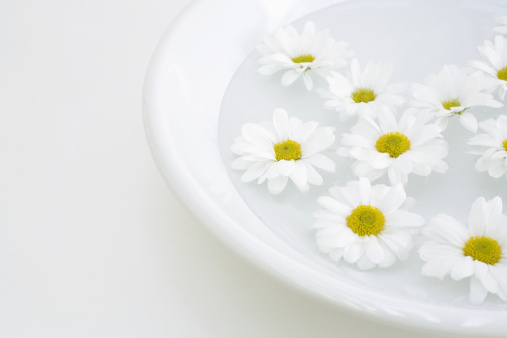 Floating On Water「White daisies floating in bowl of water」:スマホ壁紙(7)
