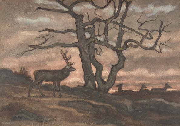 Stag「Deer And Tree Against Sunset」:写真・画像(12)[壁紙.com]