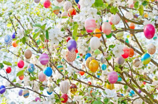 Easter「Colorful handmade Eastereggs on an apple tree」:スマホ壁紙(19)