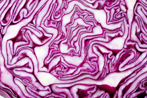 Cabbage「detail of slice of a red cabbage」:スマホ壁紙(17)