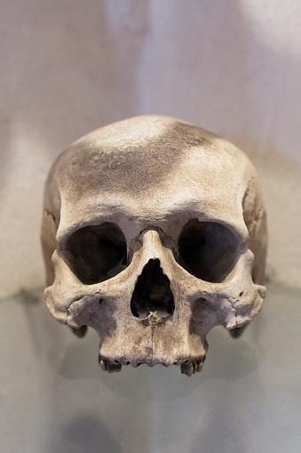 ドクロ「detail of skull in catacomb of Prague」:スマホ壁紙(16)