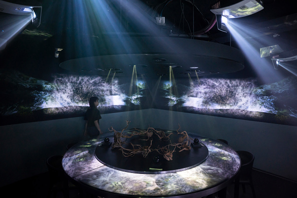 Japan「Dining Inside Tokyo's Virtual Reality Restaurant」:写真・画像(16)[壁紙.com]