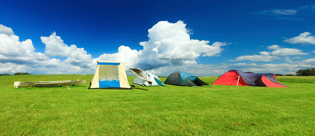 Camping「Tents in a green field」:スマホ壁紙(12)