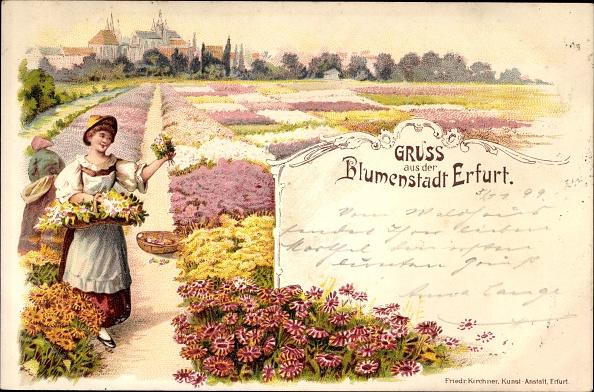 花畑「Litho Erfurt in Thüringen, Blumenstadt, Blick vom Blumenfeld auf die Stadt」:写真・画像(17)[壁紙.com]