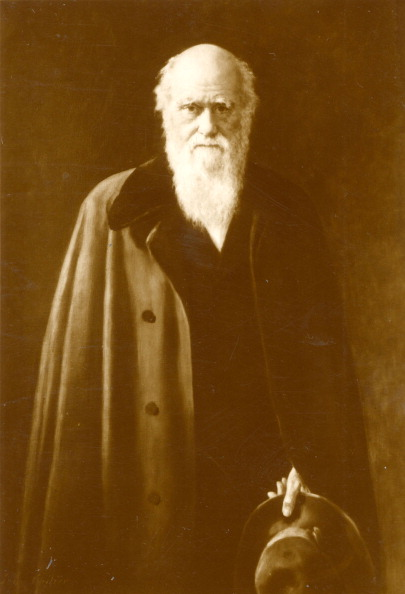 Choice「Darwin, Charles Robert  - English naturalist, the originator (with Alfred Wallace) of the theory of evolution by natural selection.」:写真・画像(9)[壁紙.com]