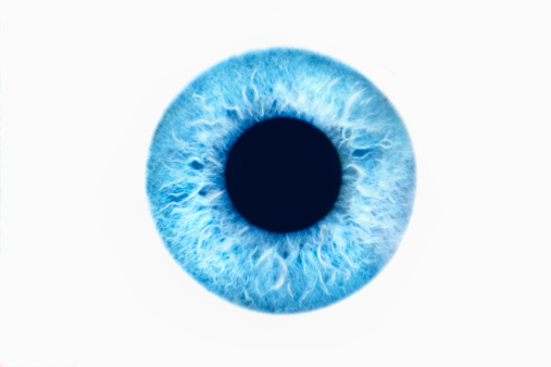 Iris - Eye「Iris」:スマホ壁紙(7)