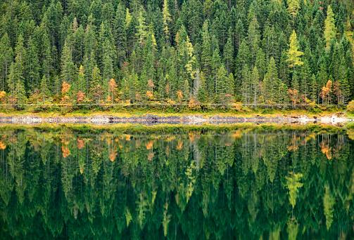 Dachstein Mountains「Autumn forest reflected in calm lake. Gosausee, Austria.」:スマホ壁紙(6)
