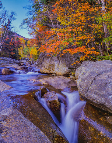 Waterfall「Autumn forest with cascading river White Mountains, NH」:スマホ壁紙(19)