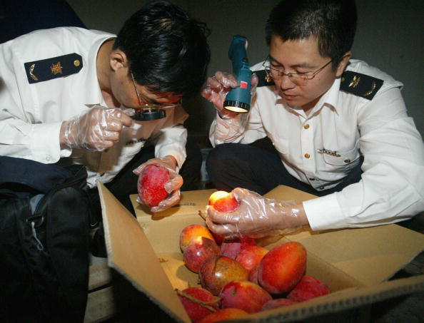 Looking Over「Taiwan-growth Fruit Arrive China Mainland」:写真・画像(3)[壁紙.com]