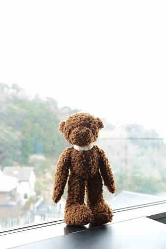 ぬいぐるみ「Brown teddy bear in front of a window」:スマホ壁紙(17)