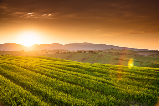 Agriculture「sunset countryside in italy」:スマホ壁紙(6)