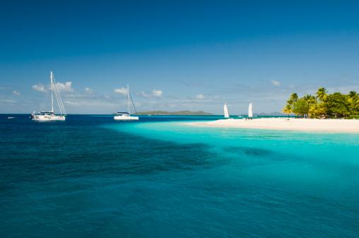 ヤシの木「パーム島のパラダイスブルーの海と白い砂浜」:スマホ壁紙(12)