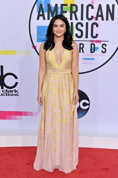 アメリカン・ミュージック・アワード「2017 American Music Awards - Arrivals」:写真・画像(15)[壁紙.com]