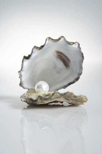 Discovery「Pearl inside oyster shell」:スマホ壁紙(14)