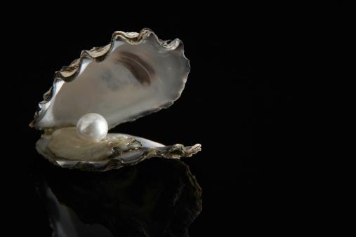 Mollusk「Pearl inside oyster shell」:スマホ壁紙(16)
