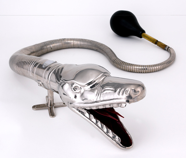 楽器「Boa Horn」:写真・画像(4)[壁紙.com]