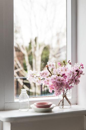 Cherry Blossoms「Cherry blossom flowers on a window sill」:スマホ壁紙(1)