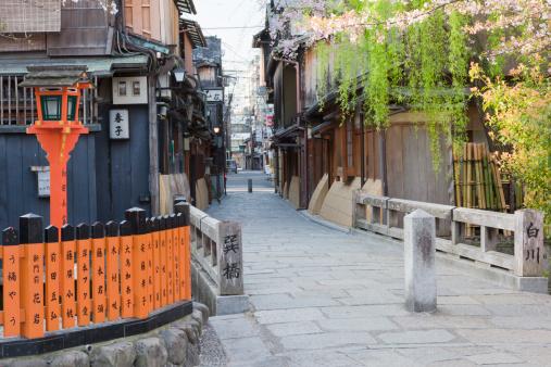 Higashiyama-ku - Kyoto「Cherry Blossom Trees」:スマホ壁紙(10)