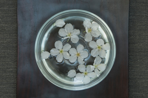 桜「Cherry blossom in glass bowl」:スマホ壁紙(15)