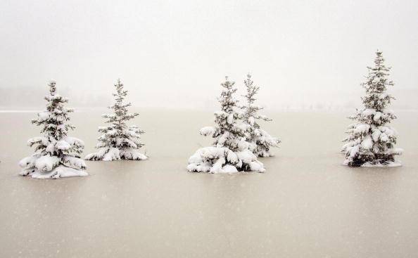 Minnesota「Snow Storm Puts Fargo Area  Residents In Limbo As Flood Waters Freeze」:写真・画像(17)[壁紙.com]
