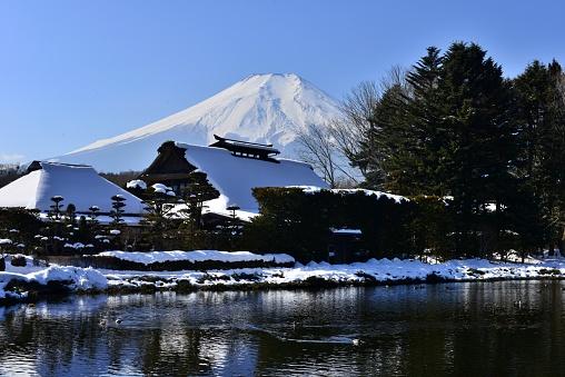 February「Snow-covered Mt Fuji, Taken from Oshino-Hakkai, Yamanashi Prefecture」:スマホ壁紙(11)