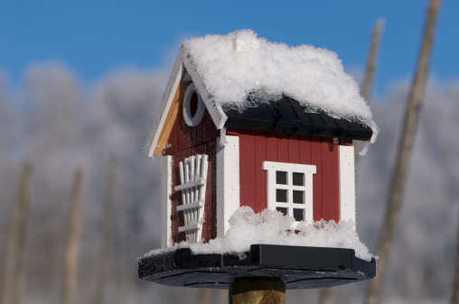 Dalarna「Snowcovered Bird House Dalarna style in Winter」:スマホ壁紙(5)