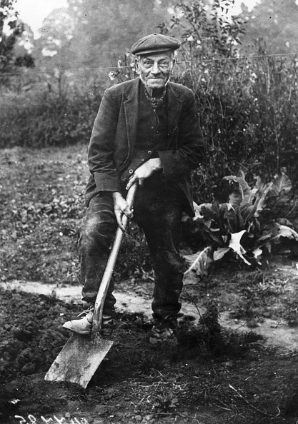 Horticulture「The Gardener」:写真・画像(11)[壁紙.com]