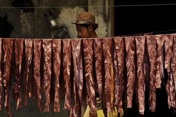 Wallet「Indonesia's Snake Skin Industry」:写真・画像(13)[壁紙.com]