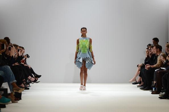 Ian Gavan「Swedish School Of Textiles - Runway: London Fashion Week SS14」:写真・画像(2)[壁紙.com]