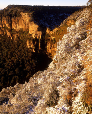 Escarpment「snow on trees above grose valley, blue mountains national park, new south wales, australia」:スマホ壁紙(13)