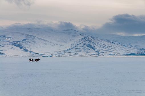 Sled「Sledge with horseback on the frozen lake」:スマホ壁紙(11)