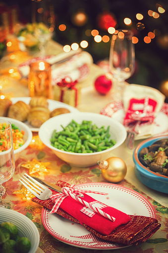 Stuffed Turkey「Festive Place Setting with Christmas Decorations」:スマホ壁紙(18)