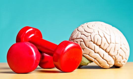 Fitness model「Intellectual heavyweight! Model brain with barbells」:スマホ壁紙(0)