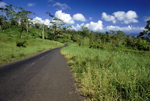 Country Road「Road through field」:スマホ壁紙(5)