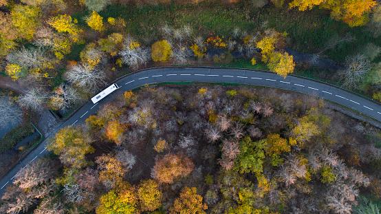 Bus「Road through autumnal forest - aerial view」:スマホ壁紙(0)