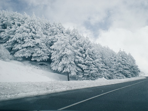 季節「Road through winter landscape, Granada, Andalucia, Spain」:スマホ壁紙(17)