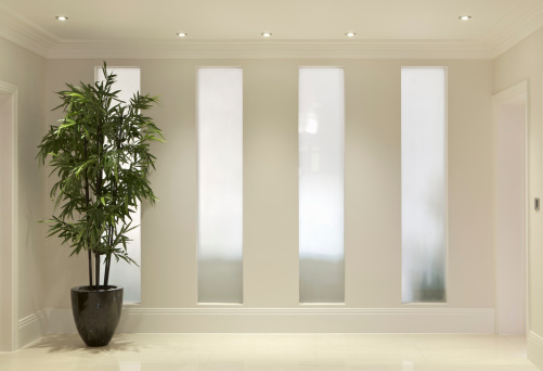 Back Lit「hallway and pot plant」:スマホ壁紙(11)