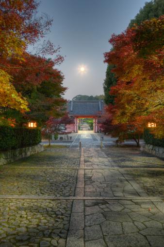 京都の夜「Autumn colored leaves of maple tree at temple」:スマホ壁紙(19)