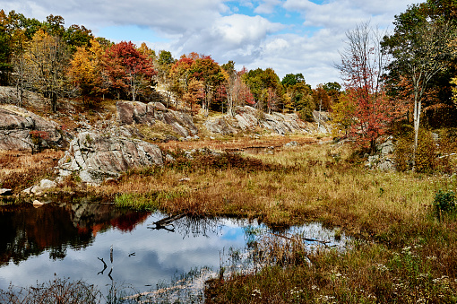Granite - Rock「Autumn coloured foliage and clouds in Frontenac Provincial Park reflected in tranquil water」:スマホ壁紙(2)
