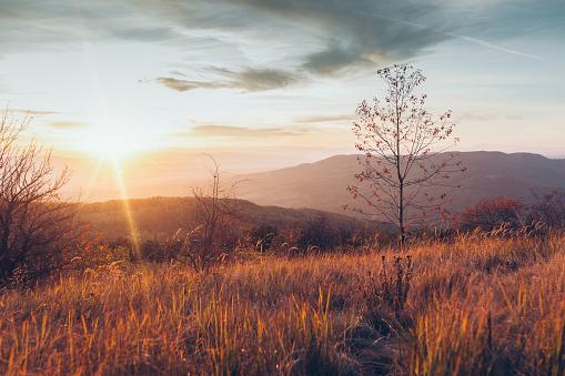 Bulgaria「Autumn colours」:スマホ壁紙(14)