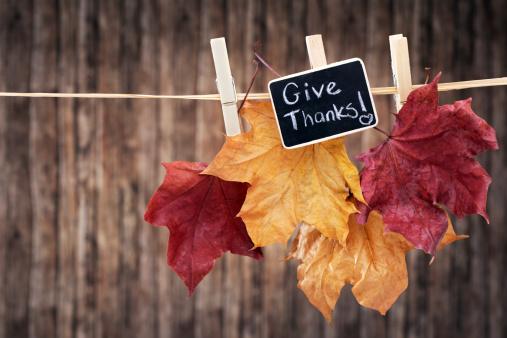 セイヨウカジカエデ「垂れ下がる秋の色のメープルの葉に洋服ライン」:スマホ壁紙(12)