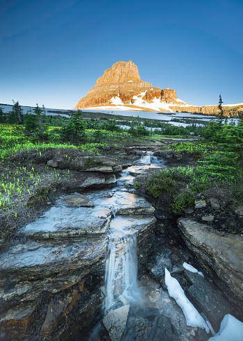 花「レイノルズ山の Logan パス、氷河国立公園」:スマホ壁紙(14)