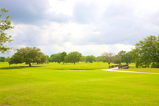 Footpath「Green lawn and trees in City Park, New Orleans」:スマホ壁紙(2)