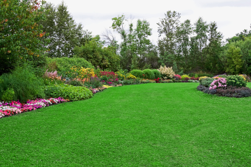 Front or Back Yard「Green Lawn in Landscaped Formal Garden」:スマホ壁紙(17)