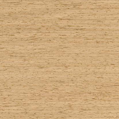 Ash Tree「White Ash background」:スマホ壁紙(14)