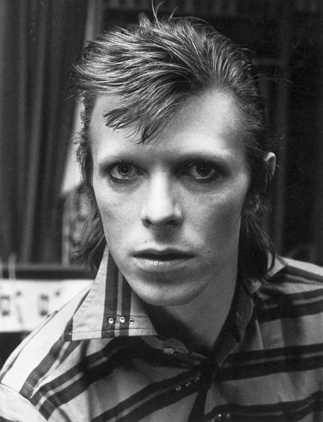 Headshot「Bowie」:写真・画像(18)[壁紙.com]