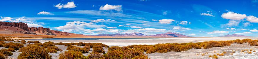 The Nature Conservancy「High-up mountains reserve - Andes plane - Altiplano andino - Tara salt lake reserve - Salar de Tara - Flamingo refuge - Panoramic view」:スマホ壁紙(8)