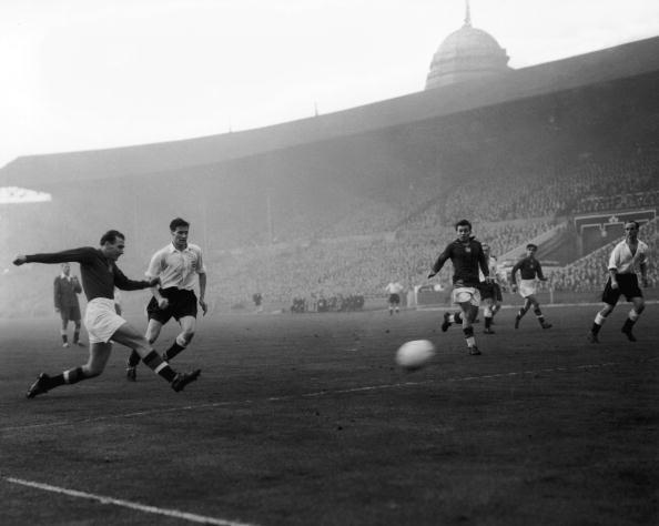 Hungarian Culture「Match Of The Century」:写真・画像(6)[壁紙.com]